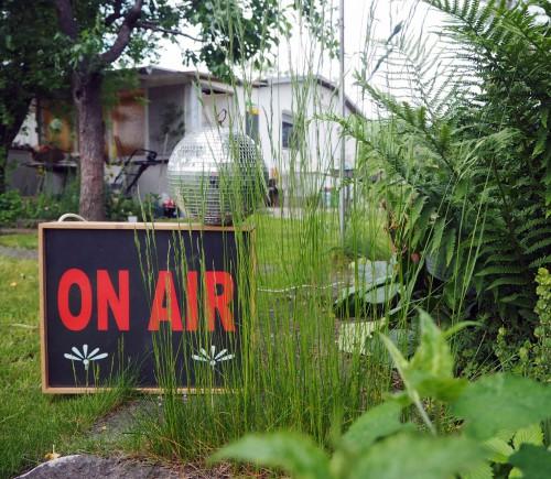 Datscha Radio / Firefly